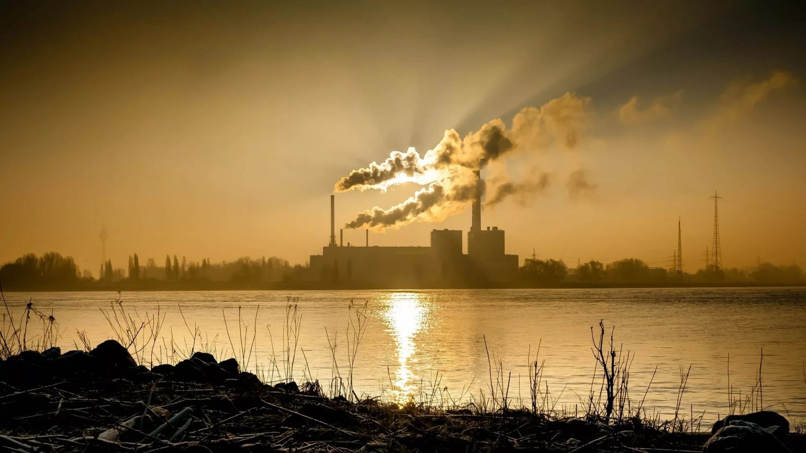 Human activities and their impact on the environment